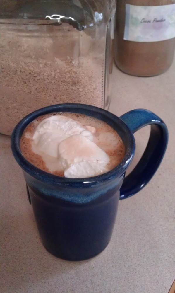 I'll never buy hot cocoa mix again...